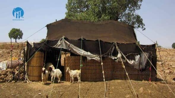 بیمه روستایی و عشایری